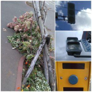 台風後の画像